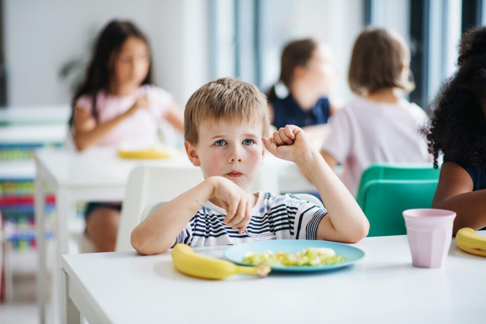 A group of cheerful small school kids in canteen, eating lunch