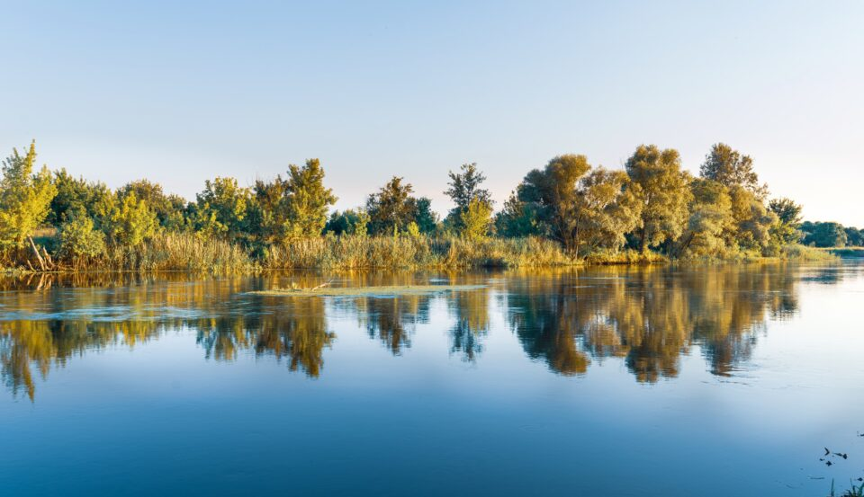 Scenery of silent rural lake near green forest