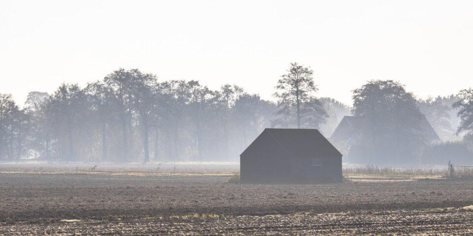 Misty november countryside landscape