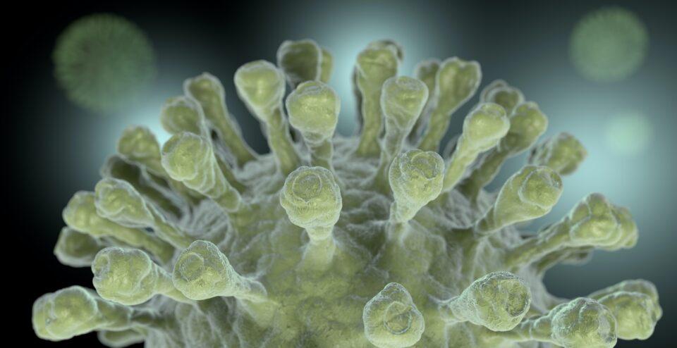 coronavirus macro